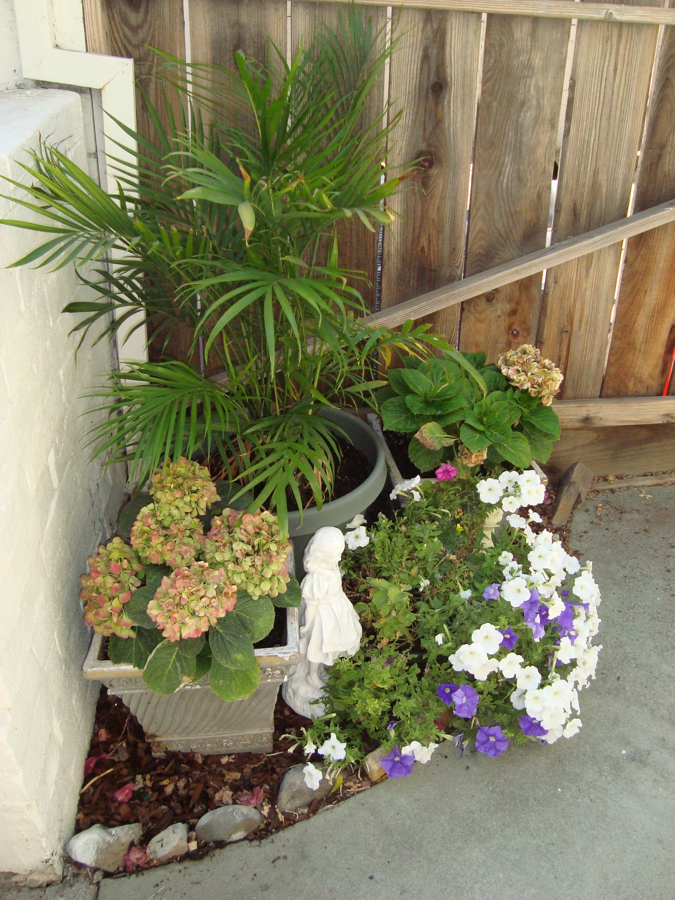 Palm and hydrangeas!
