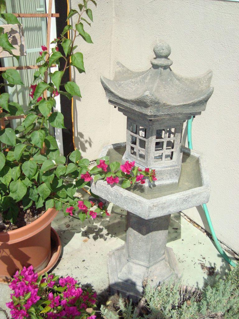 Fountain and bougainvillea!